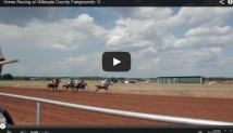Summer Horse Racing in Fredericksburg