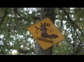 Thumbnail for video Bats at Old Tunnel State Park: Visit Fredericksburg TX